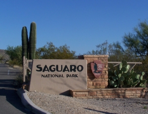 Saguaro_National_Park_East_Entry