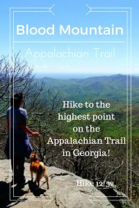 Hike the appalachian trail in Georgia!