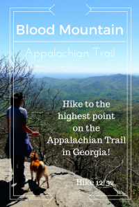 Hike the appalachian trail in Georgia!