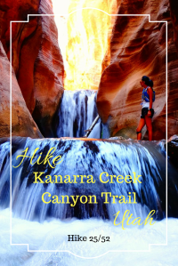 Hike Kanarra Creek Canyon Trail. Hike in Utah. Read about our amazing time on this beautiful canyon hike.