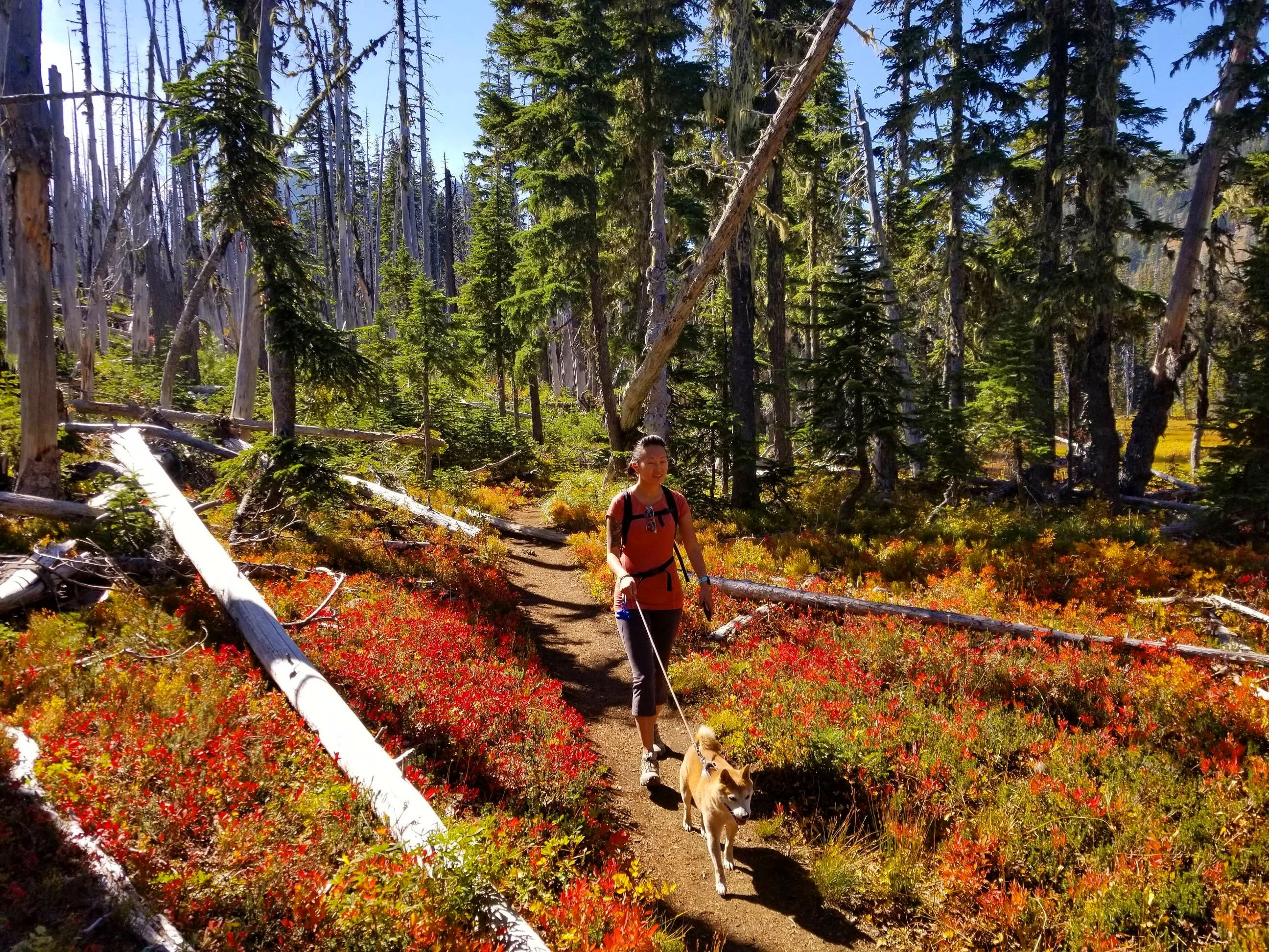 Best Moderate Hikes in Bend, Oregon